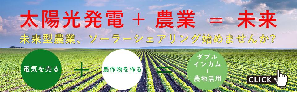 未来型農業 ソーラーシェアリング
